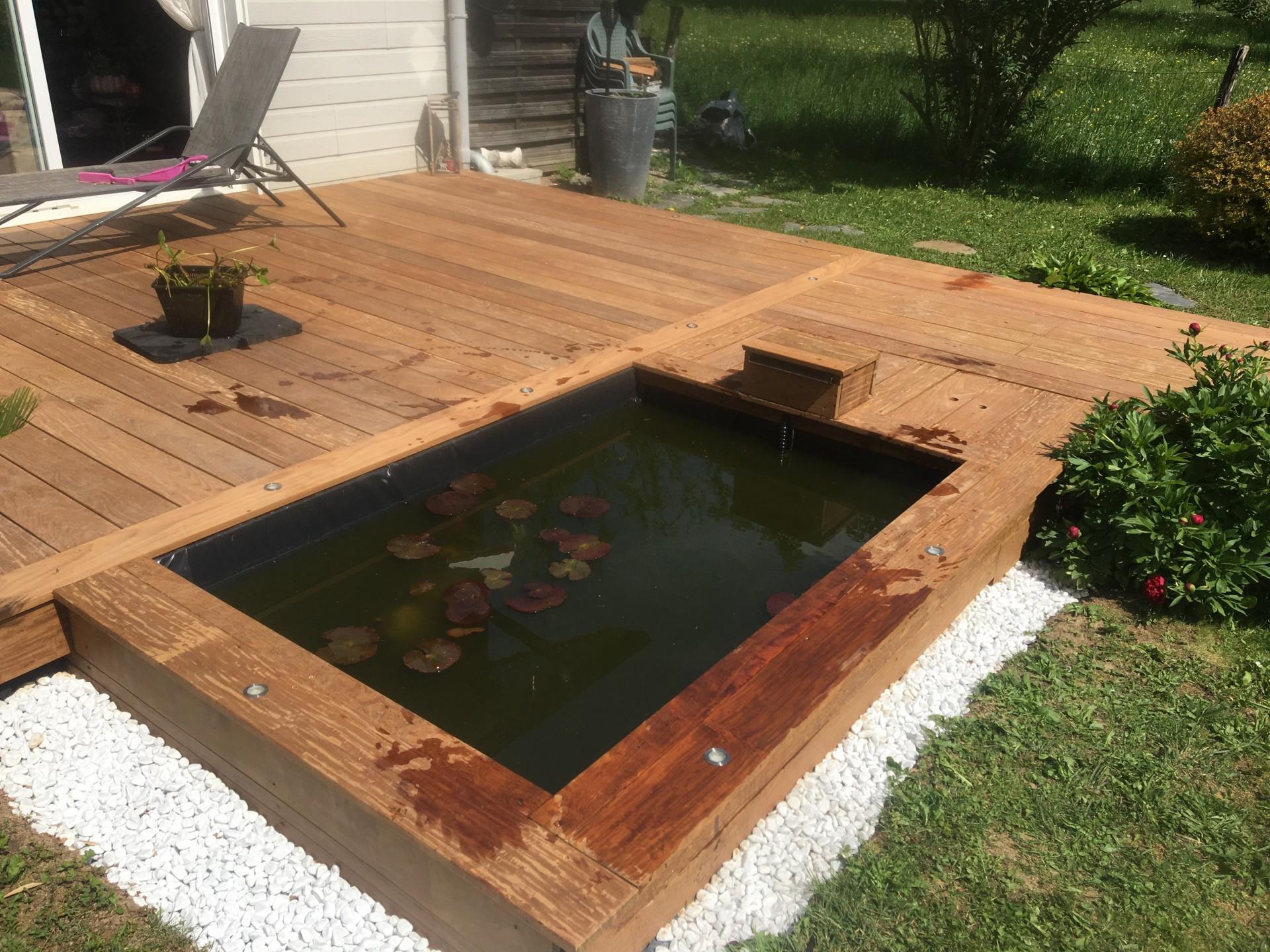 bassin terrasse bois exotique